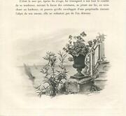 Antique Victorian Sail Boats Terrace Stairs Geraniums Urn Vase Stairs Art Print