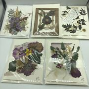 A Unique Set Of 5 Handmade Greeting /gift / Note /cards W Real Dried Flowers Wow