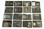 Lot 16 Antique Hammer Glass Photographic Dry Plate Negatives Botany Text Images