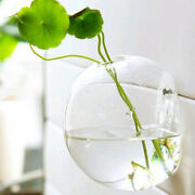 7pcs Wall Mounted Hanging Glass Flower Vase Terrariums Hexagon Plant Holders