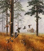 David Maass Misty Morning Quail Artistand039s Proof On Paper