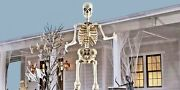 Tall Giant Skeleton W/ Animated Lcd Eyes 12 Ft Halloween Prop Ready To Ship