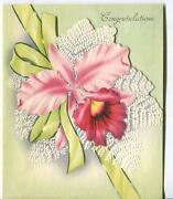 Vintage Mid Century Pink Orchid Lime Green Ribbon Embossed Ferns Greeting Card