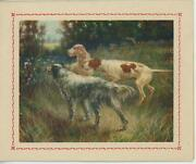 Vintage English Pointer Setter Hunting Dog Marsh Grass Old Card Lithograph Print