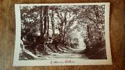 1890's Antique Cabinet Card Graphoscope Photo - Littleover Hollow Derby