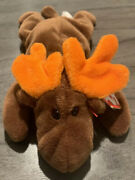 Ty Beanie Baby Chocolate The Moose 1993 With Tag Errors