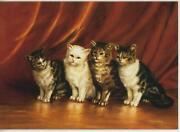Vintage White Cat Tabby Cats 1 Red School House Apples Teacher Abcand039s Art Card