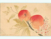 Pre-linen Art Nouveau Embossed - Airbrushed Cherry Fruit On The Tree K7816