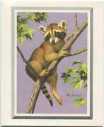 Vintage Animal Raccoon Tree Nature 1 Christmas Country Store Village Horse Card