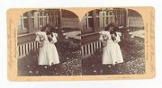 Antique Victorian Stereoview Real Photo Card Girl Kitten Cat And Puppy Dog Love