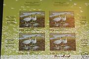 Canada Quebec Wildlife Dq60a Impersigned Numbered Rare