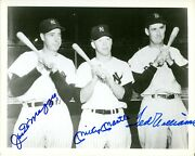Ted Williams Mickey Mantle Joe Dimaggio Yankees Autographed 8 X 10 Photo