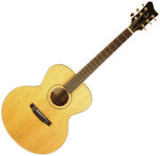 Peter Nelson Pan Handmade Jumbo Acoustic Guitar - One Of A Kind