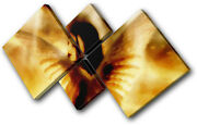 Abstract Fairy Fire Girl Fantasy Canvas Wall Art Picture Print Va