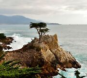 Lone Cypress By Barbara Snyder Monterey Carmel Seascape 24 Note Cards And Envelps