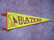 1973/74 1974/75 Vancouver Blazers Wha Hockey Pennant Flag With Streamers Sharp