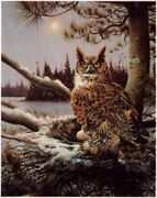 Owen Gromme Early Nester - Great Horned Owl - 5th Print In Master's Edition