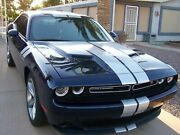 Fits 2015 - Up Dodge Challenger 16 Piece Rally Stripe Decal Kit