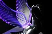 Flying Swan 40and039s 50and039s Hood Ornament Custom Hot Rod Truck Clear Wings Purple Led