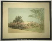 1920's Hand Colored Photo Of Pink Shower Trees And Residences Honolulu Hawaii