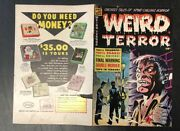 Weird Terror - Front And Back Cover Only 13