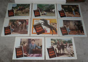 Courage Of Black Beauty Orig 1957 Lobby Card Set Johnny Crawford 11x14 Posters