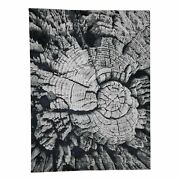 9and039x12and039 Tree Bark Wool And Silk Abstract Design Hand Knotted R41236