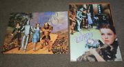 Two The Wizard Of Oz 12.5x17 Collectible Movie Metal Tin Wall Signs Dorothy Lot