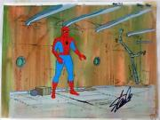 Spider Man Woman 1979 Hand Painted Production Cel And Background Signed Stan Lee