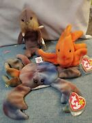 3 Amazing Rare Ty Beanie Babies Claude The Crab Jolly The Walrus Goldie...