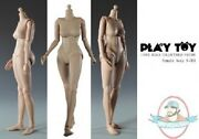 1/6 Scale Female Action Figure Body S001 Small Breast Play Toy New