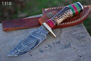 Custom Hand Forged Damascus Steel Hunting Knife W/ Stag Brass Guard Handle 1310