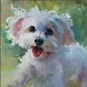 5d Diamond Painting Maltese Puppies Embroidery Cross Stitch Living Room Decors