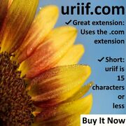 Brand New Uriif Domain Name For Sale By Owner
