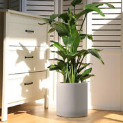 White Cylinder Ceramic Plant Pot - 9.48inch Planters For Indoor Plants Flower