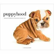 Puppyhood Life-size Portraits Of Puppies At 6 Weeks Old By Smith J. Nichole