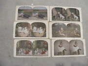 6 Color Stereograph Cards Animals Pets