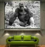 24 X 36 | Gorilla King By Dprlab | 2021 Advertising | First Print 1/300