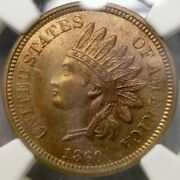 1860 Indian Head Cent/penny Magnificent Stunning Scarce Pointed Bust Ngc Ms 64