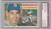 Ted Williams 1956 Topps White Back 5 Psa 8 Nm-mtoc