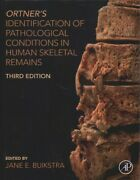 Ortnerand039s Identification Of Pathological Conditions In Human Skeletal Remains...