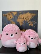 Squishmallows The Poodle Set Of 3 Nwt Htf Rare