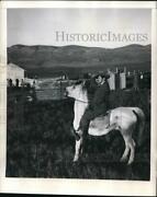 1947 Press Photo Mounted Policeman As A Village Is Erected