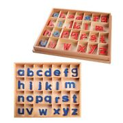 Kids Montessori Language Toys Wooden Movable Alphabet Preschool Early Learning E