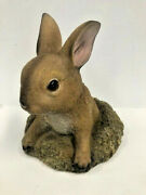 Home Locomotion Curious Bunny Garden Decor