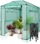 8and039x6and039 Ft Walk-in Greenhouse Folding Garden Plant Heavy Duty Green House Grow