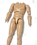 1/6 Hot Toys Platoon Action Figure Accessory Body With Hands Peg