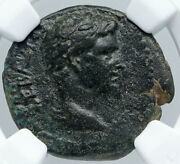 Apameia In Phrygia 27bc Ancient Roman Coin Of Augustus Artemis Statue Ngc I89153