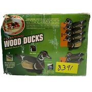 Final Approach Wood Duck Hen Drake Floating 6 Pack Hunting Duck Decoys
