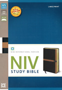 Niv Study Bible Large Print Leathersoft Black/tan Red Letter Thumb Indexed New